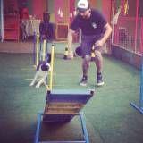 Adestramento de cachorrinhos no Pacaembu
