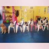 Adestramento para cachorros no Jardim Bonfiglioli