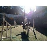 Empresas de adestramento de cães em Osasco