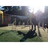 Empresas de adestramento para cães em Itapecerica da Serra
