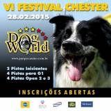 Festival Chester 2015 em Pinheiros