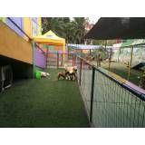 Hotéis para animal no Campo Belo