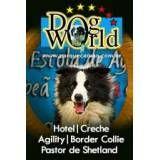 Hotel para cão em Barueri