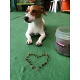 Onde tem adestramento para cães em Santana de Parnaíba