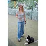 Preço de adestrador para cachorro no Jardim São Luiz