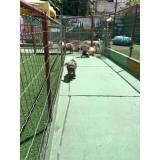 Preço de Daycare canino no Campo Belo