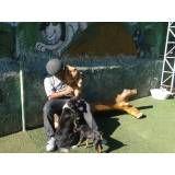 Preços de Daycare para cão  no Jockey Club
