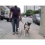 Quanto custa adestrador para cães em Perdizes