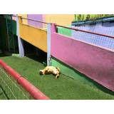 Valor de Daycare para cachorro em Embu das Artes